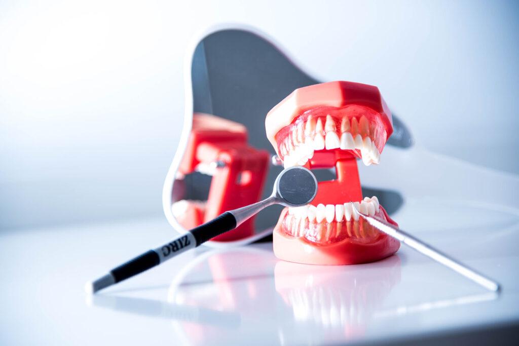 stomatologie-dentara-novalife